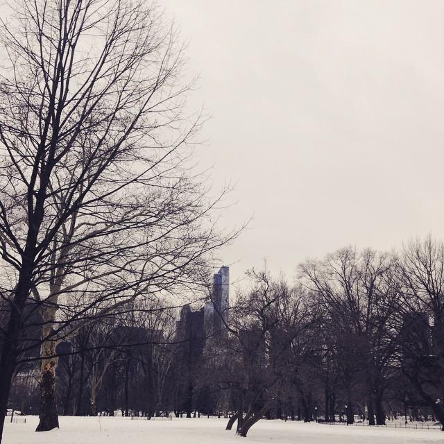 Central Park on a wintry Sunday morning